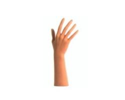 Ręka damska, ekspozytor, kolor cielisty